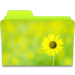 Folder Sunflower icon